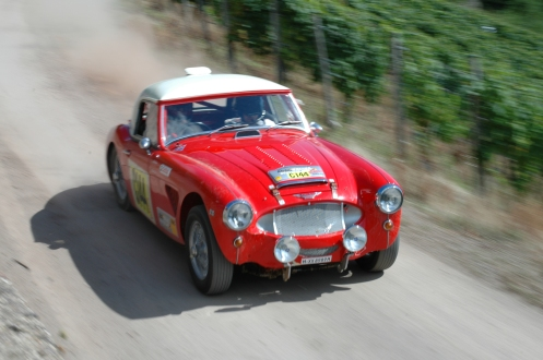 Austin Healey 3.000 rally XLL